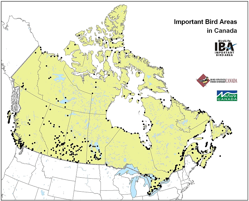 Canadian Important Bird Areas – Map of Canada Interactive